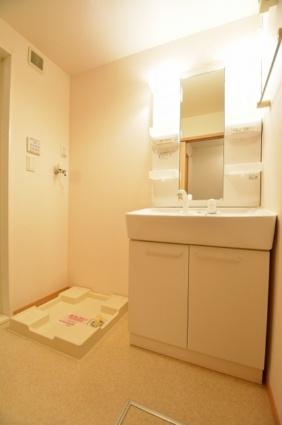 カーサ アルコ・イーリス[1LDK/45.31m2]の洗面所