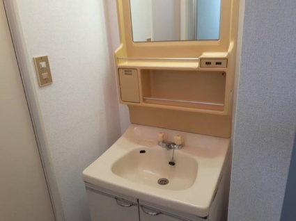 サンモールMⅡ[3K/47.76m2]の洗面所