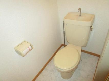 ロイヤルタビコ[3DK/52.14m2]のトイレ