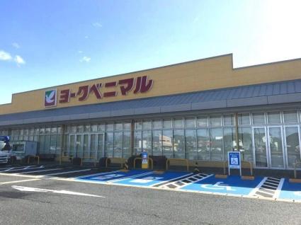 栃木県宇都宮市野沢町[2LDK/55.2m2]の周辺8