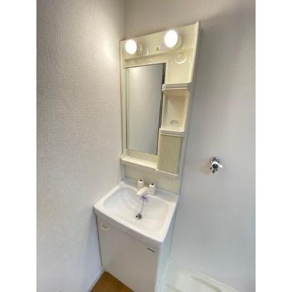 テンローズ106[1K/25.02m2]の洗面所