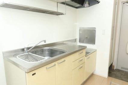 ロイヤル ピークス[1R/30.27m2]のキッチン