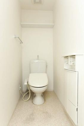 ロイヤル ピークス[1R/30.27m2]のトイレ