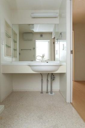 ロイヤル ピークス[1R/30.27m2]の洗面所