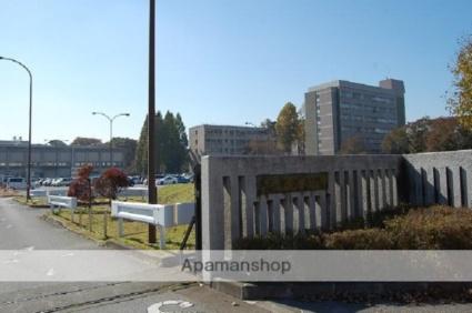 栃木県宇都宮市石井町[3K/51.44m2]の周辺4