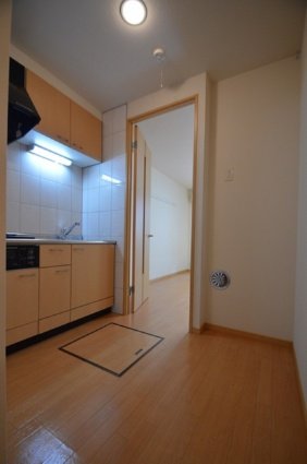 ステイゴールド[1K/29.75m2]のキッチン