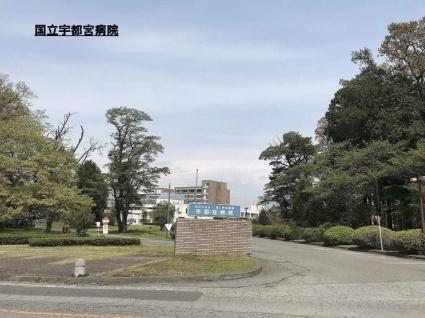 栃木県宇都宮市下岡本町[1LDK/33.39m2]の周辺7