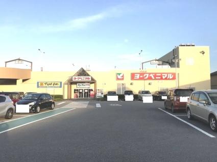 栃木県宇都宮市下岡本町[1LDK/29.25m2]の周辺8