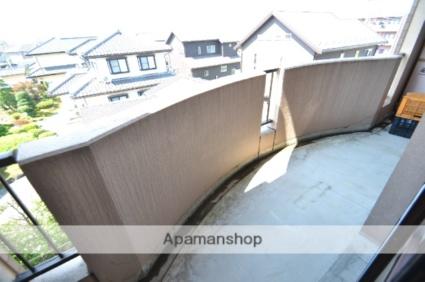 サンライズパセオ[3DK/60.57m2]の玄関