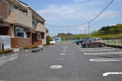プラシードD[2DK/42.98m2]の駐車場