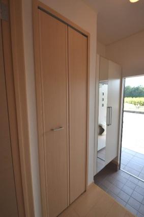 プラシードD[2DK/42.98m2]の玄関