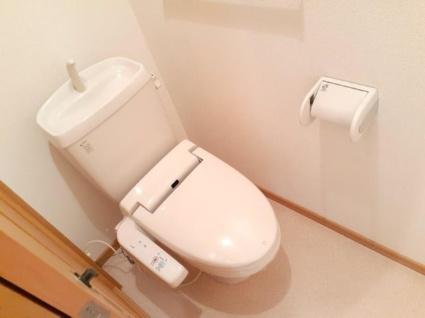 シュティルグランツⅠ[1LDK/46.49m2]のトイレ