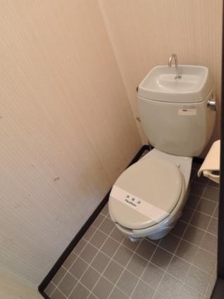 ハイツベスト Ⅰ[2DK/39.6m2]のトイレ