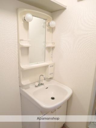ラフォーレ山川8[2LDK/50.78m2]の洗面所