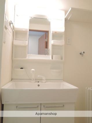 KARIN MANSION足利[1SDK/33.2m2]の洗面所