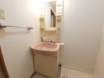 ニューマリッチイシカワ弐号館[2LDK/55.39m2]の洗面所