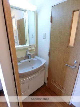 リバーストーンB[3LDK/63.25m2]の洗面所