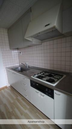 エトワール天神[3LDK/73.85m2]のキッチン