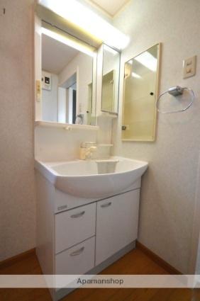 下細井一般住宅[2SLDK/115.93m2]の洗面所
