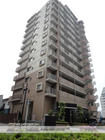 群馬県高崎市、高崎駅徒歩5分の築11年 13階建の賃貸マンション