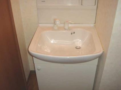 プレステージ中居[2LDK/57.75m2]の洗面所