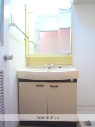 埼玉県さいたま市大宮区北袋町2丁目[2LDK/56.3m2]の洗面所