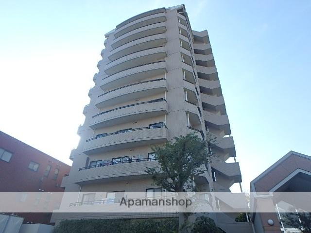 埼玉県さいたま市北区、日進駅徒歩14分の築25年 11階建の賃貸マンション