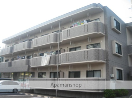 埼玉県北足立郡伊奈町、伊奈中央駅徒歩27分の築13年 3階建の賃貸マンション