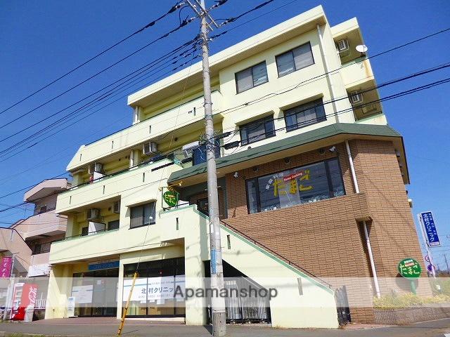 埼玉県富士見市、みずほ台駅徒歩7分の築17年 4階建の賃貸マンション