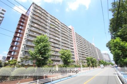 埼玉県志木市、北朝霞駅徒歩24分の築43年 14階建の賃貸マンション