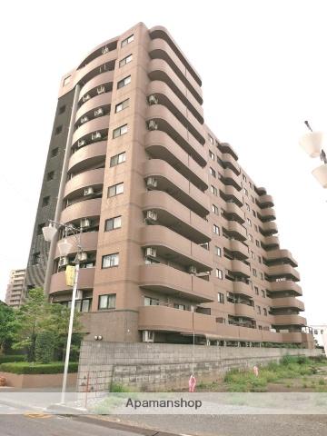 埼玉県飯能市、東飯能駅徒歩3分の築20年 11階建の賃貸マンション