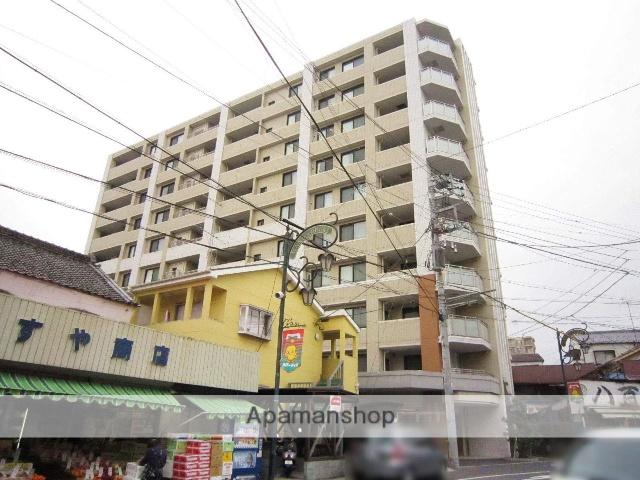 埼玉県飯能市、東飯能駅徒歩11分の築9年 10階建の賃貸マンション