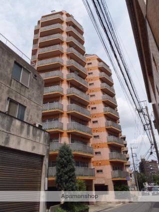 千葉県千葉市中央区、千葉駅徒歩20分の築27年 13階建の賃貸マンション