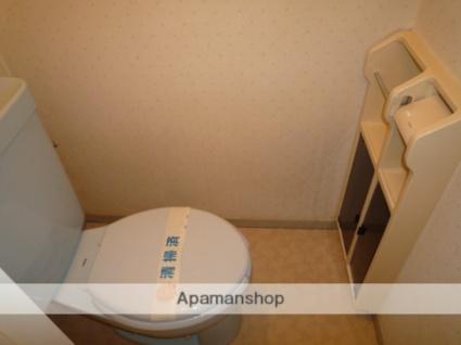 千葉県君津市南子安5丁目[2LDK/51m2]のトイレ
