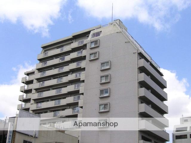 千葉県千葉市中央区、千葉駅徒歩15分の築29年 13階建の賃貸マンション