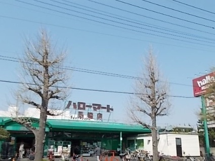 千葉県松戸市馬橋[1R/32.05m2]の周辺3