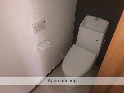 シティハイツⅥ[1LDK/38.92m2]のトイレ