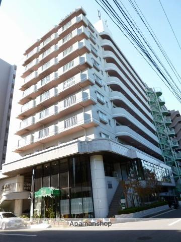 千葉県千葉市美浜区、新検見川駅徒歩18分の築27年 10階建の賃貸マンション