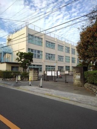 武蔵野ハイツ1[1LDK/55.46m2]の周辺2