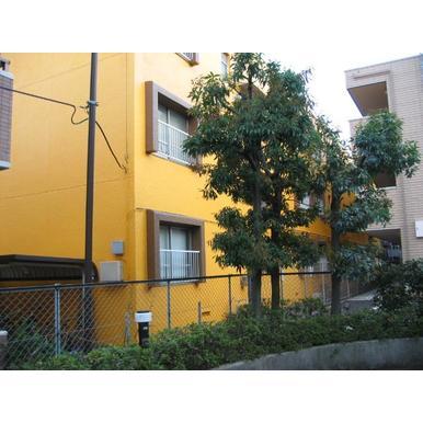 東京都杉並区、芦花公園駅徒歩5分の築43年 3階建の賃貸マンション