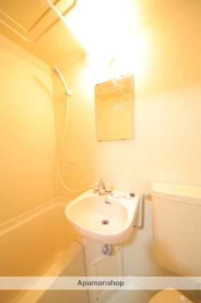 ルミニコスモス[1R/17.75m2]の洗面所
