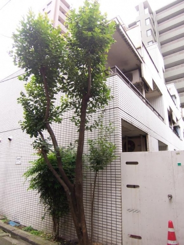 東京都文京区、後楽園駅徒歩5分の築31年 3階建の賃貸マンション
