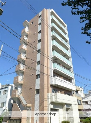 東京都新宿区、大久保駅徒歩12分の新築 9階建の賃貸マンション