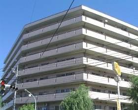 東京都葛飾区、新小岩駅徒歩24分の築25年 8階建の賃貸マンション