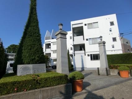 東京都小金井市、武蔵小金井駅徒歩21分の築34年 3階建の賃貸マンション
