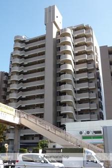東京都葛飾区、お花茶屋駅徒歩9分の築21年 13階建の賃貸マンション