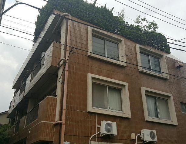東京都板橋区、下板橋駅徒歩13分の築37年 3階建の賃貸マンション