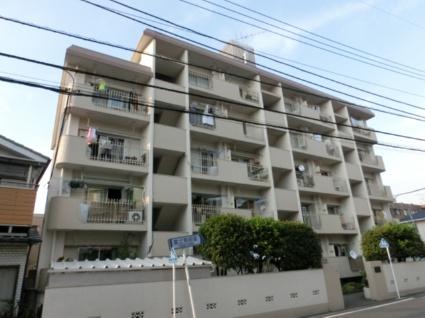 東京都板橋区、ときわ台駅徒歩25分の築41年 5階建の賃貸マンション