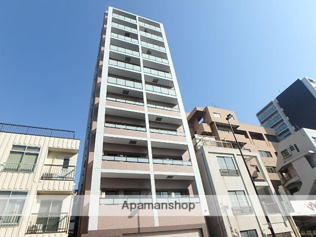 東京都江東区、東あずま駅徒歩15分の新築 11階建の賃貸マンション