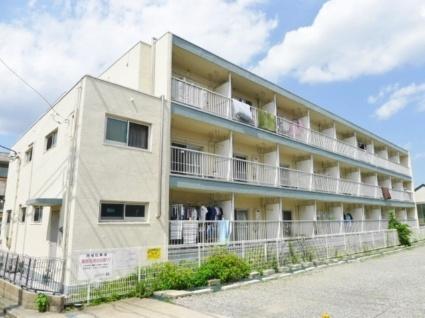東京都世田谷区、桜新町駅徒歩6分の築49年 3階建の賃貸マンション